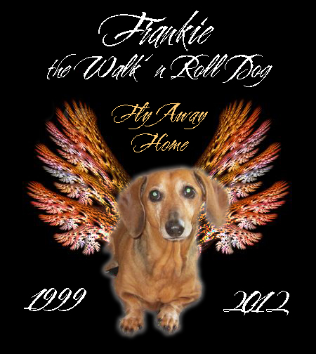 Memorial photo of Frankie the Walk 'n Roll Dog